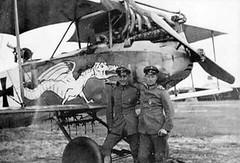 1/48 Albatros C. III - Page 4 29849887157_55b24e194f_m