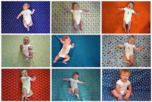 Collage Nine Months