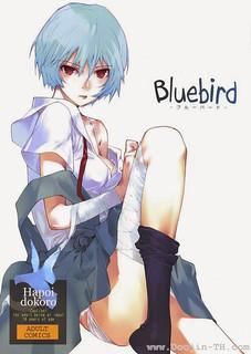 อีวานเกเลียน – นกสีน้ำเงิน – โดจินแปลไทย