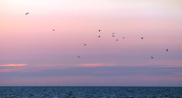 Zandvoort sunset IV
