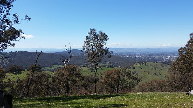 looking out over albury