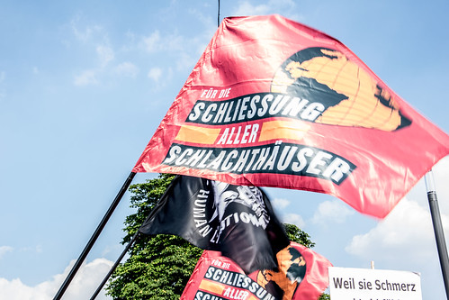 Stuttgart für die Schließung aller Schlachthäuser 2018