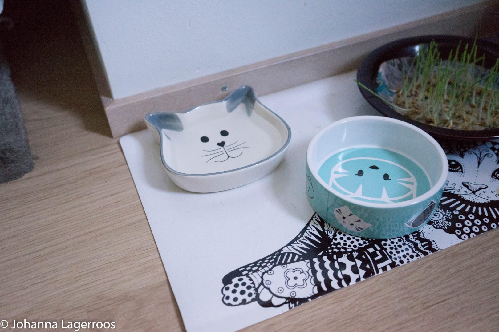 food bowls