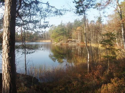 SÖ E49 Holmsjön2