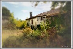 La maison abandonnée - Photo of Combiers