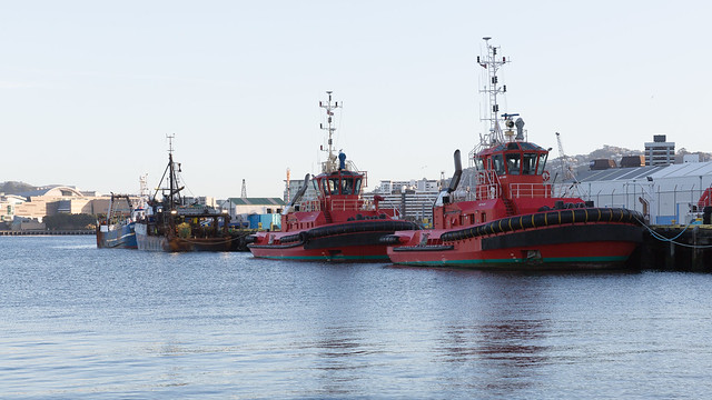 harbour with tugs