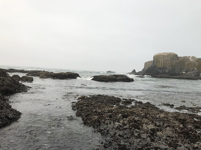 Yaquina Head, Newport, Ore. August 2018