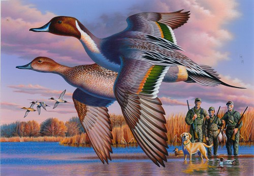 2018 Federal Duck Stamp Contest Entry 094