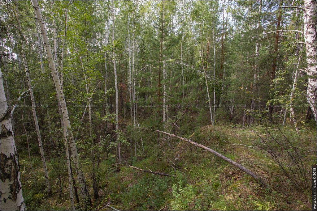 Вишневогорский рудник: жила №136