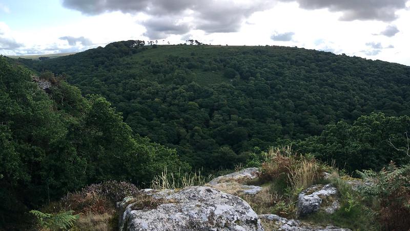 Dewerstone Rock top