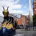 60 Manchester Stem Bee