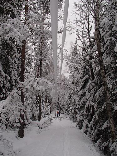 SÖ E15.2 Snöhäng