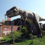 NJ - Leonia: Field Station: Dinosaurs - Tyrannosaurus Rex