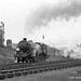 c.1964 - Sculcoates goods yard, Hull, East Yorkshire.