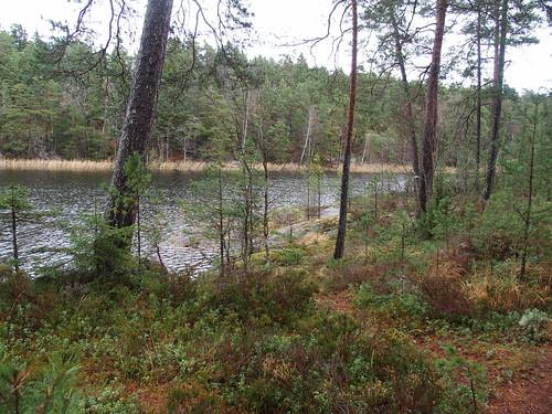 SÖ E54 Sjön Björken2