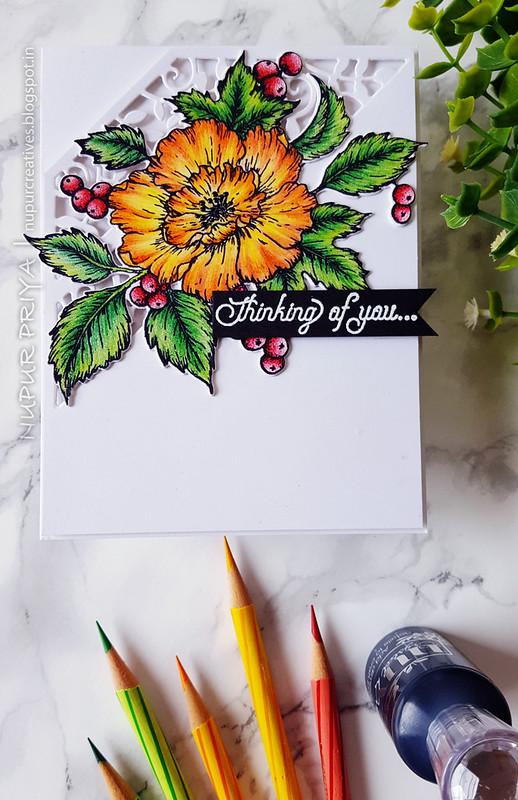 Pencil Clored Florals_1