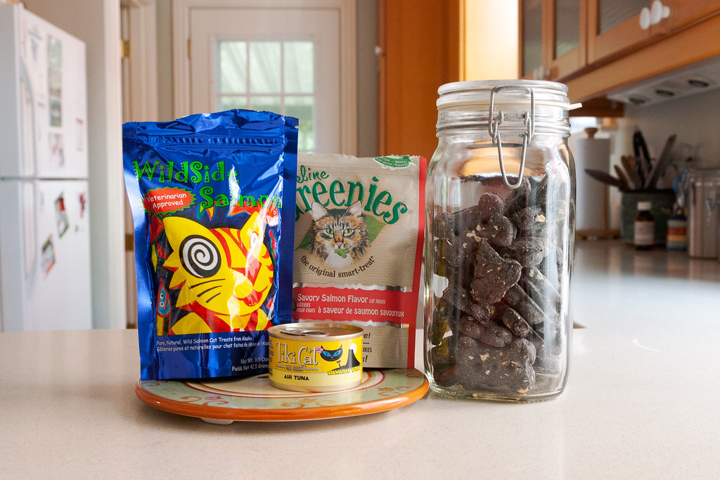 Some of the treats we give our pets: Wildside Salmon, Feline Greenies, Tiki Cat wet cat food, and charcoal dog biscuits