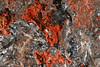Photo:コラロ石 / Coralloite By dnh_macro