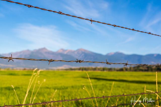 Bitterroot Valley Fence