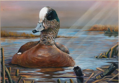 2018 Federal Duck Stamp Contest Entry 113