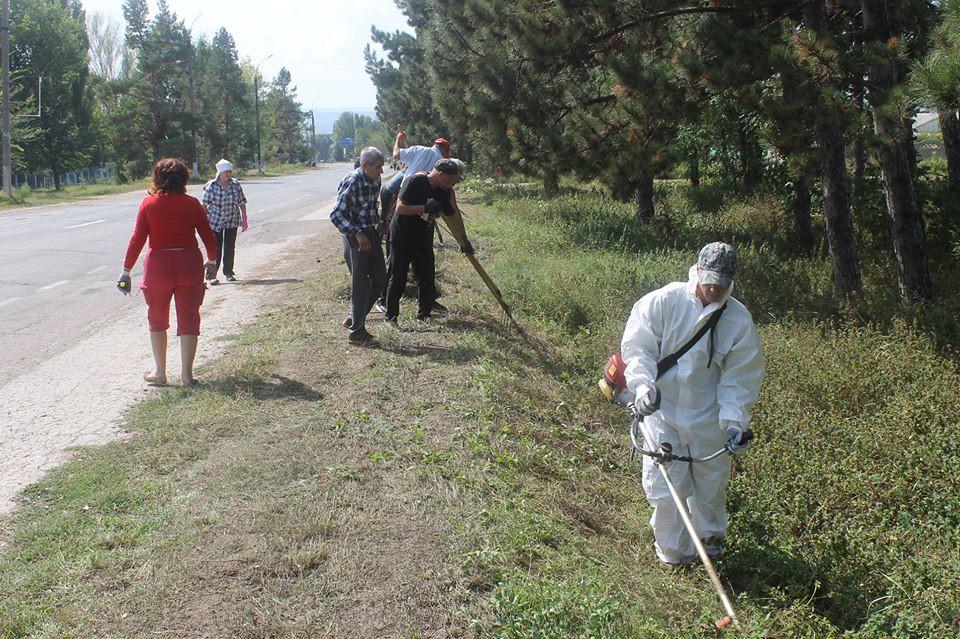 Ziua Globală a Curățeniei marcată la Leova