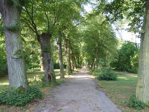 Weimar - Schloss Belvedere, im Park