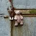 Pink Teddy Bear. Pinner Bridle Path