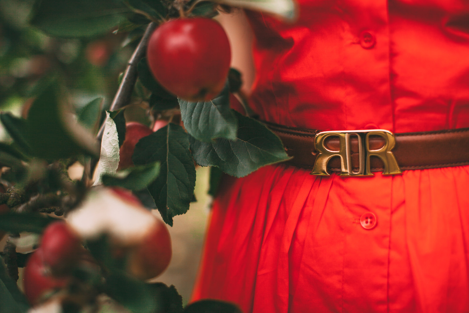 red apples-39