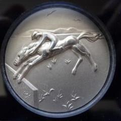 Dali Calgary Olympics medal horse riding
