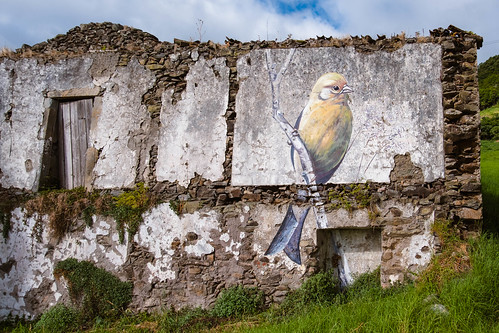 Street art in Flores - Azores Island [EXPLORED - 11/09/2018]