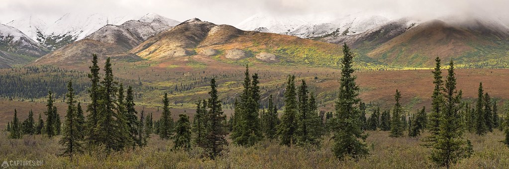 Colored hills with snow topping - Alaska