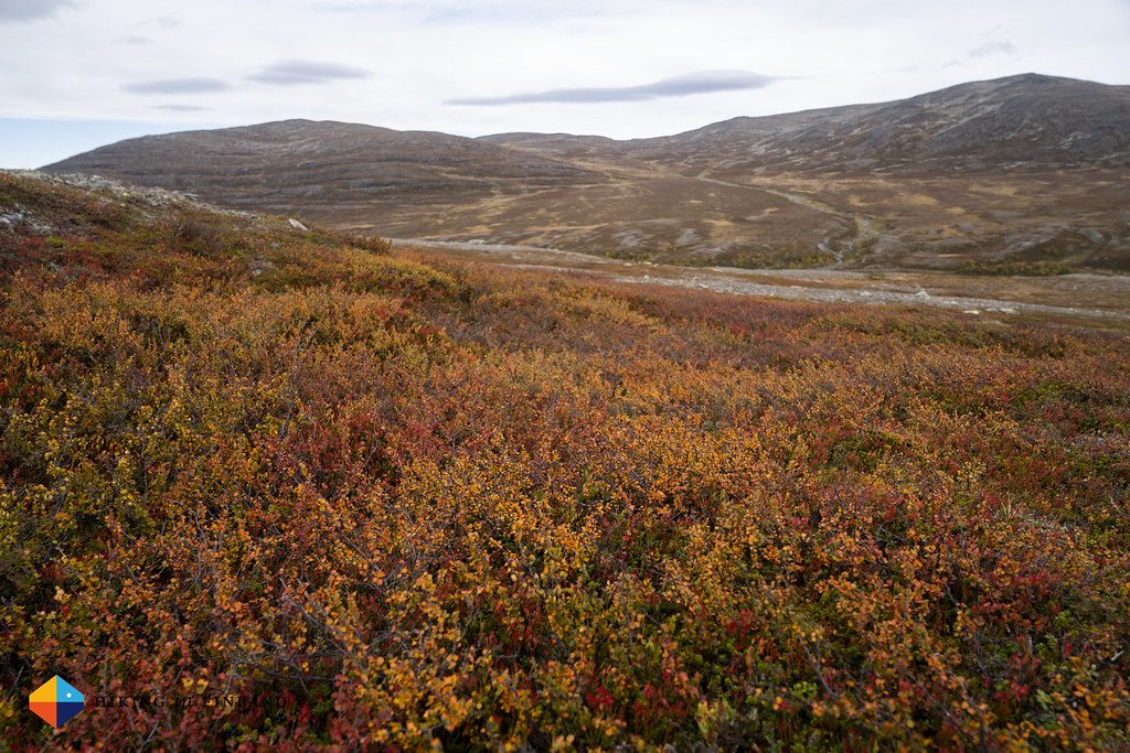 Autumn in the fjell