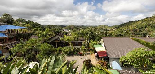 cedellabooker mom bobmarley ninemile ninemiletour tropical town jamaica caribbean travel vacation tourism island reggae rasta saintann house home birthplace museum jm rastafari rastafarianism