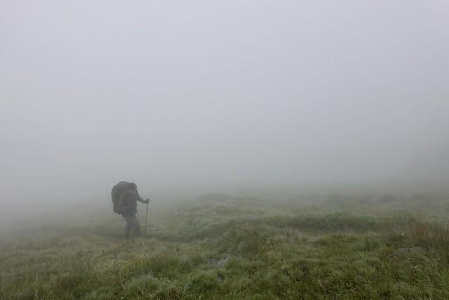 Misty walking
