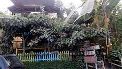 KPA Sikolong - Baraka