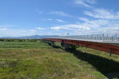 Inari Ohashi (稲荷大橋) and Mount Hiei (比叡山)