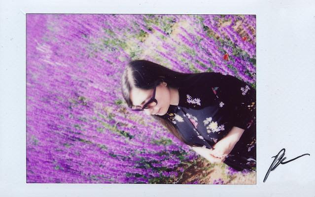 """Fujitivas_62 """" Purple Spring """""""