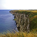 White Cliffs of Flamborough.
