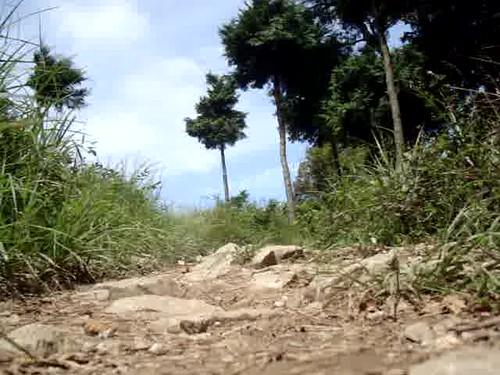 Yeongdo Berglauf