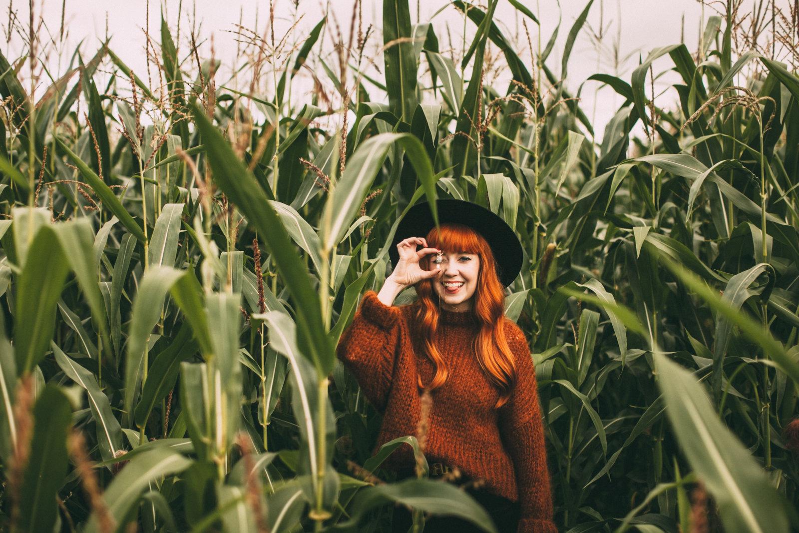 corn field-35