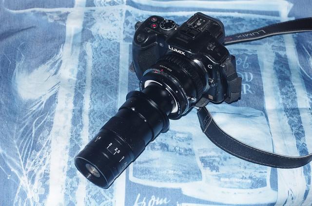 ultra macro lens set, Pentax K-5 II, smc PENTAX-DA 18-55mm F3.5-5.6 AL WR