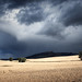 After the Storm by ShinyPhotoScotland