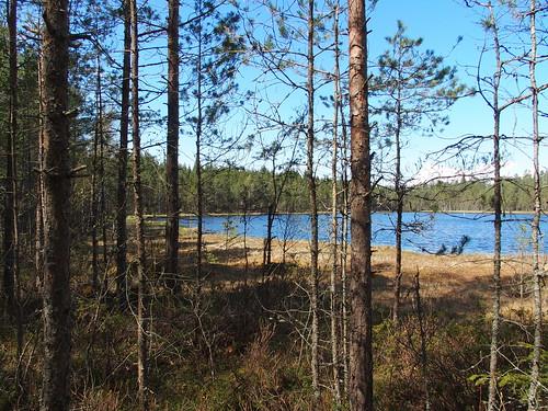 SÖ E25 Sjön1