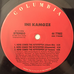 NI KAMOZE:HERE COMES THE HOT STEPPER(LABEL SIDE-B)