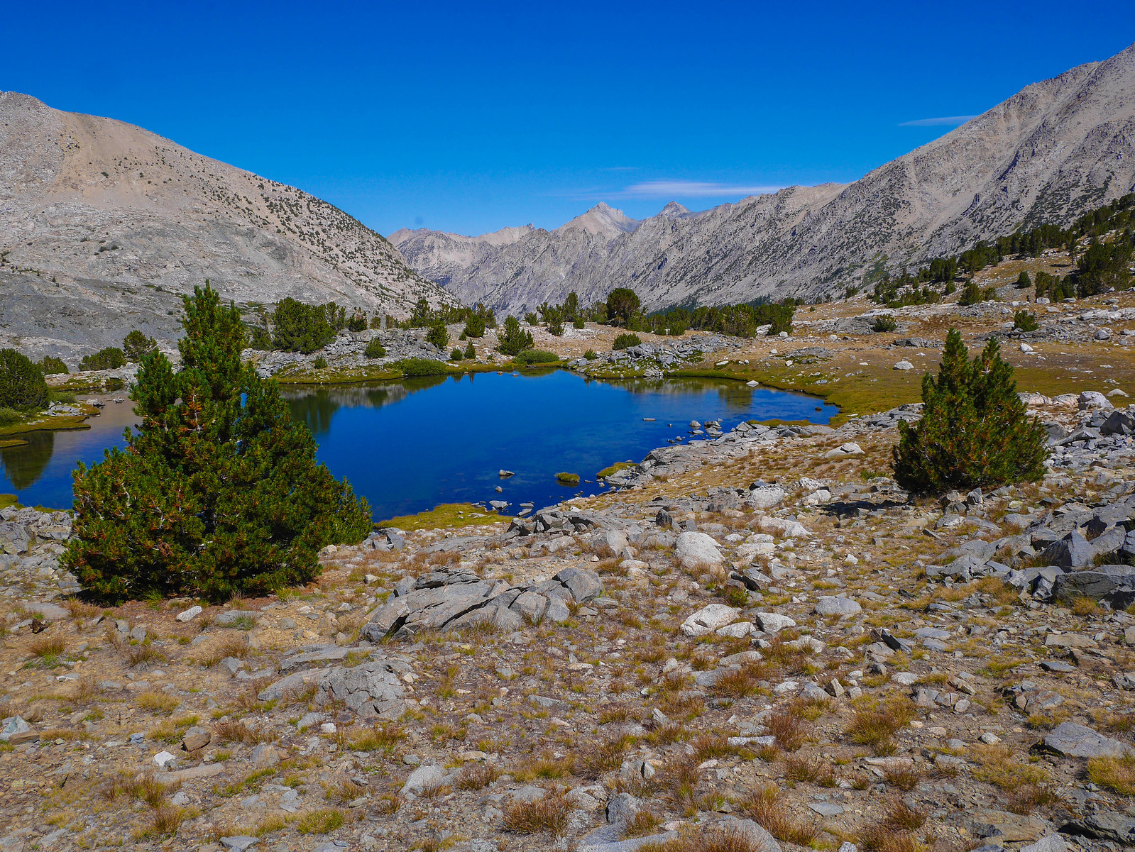 Tarn on the JMT below Forester