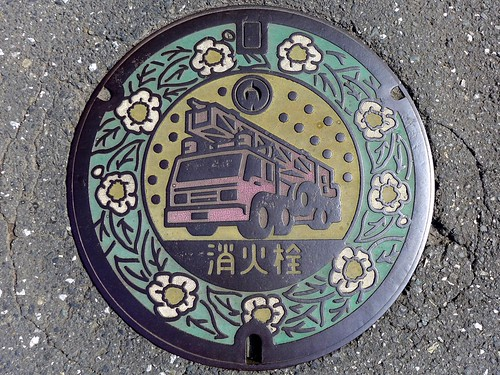Iruma Saitama, manhole cover 2 (埼玉県入間市のマンホール2)