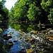River Brathay
