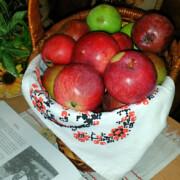 День яблук 19.08.18 В. Некрасова