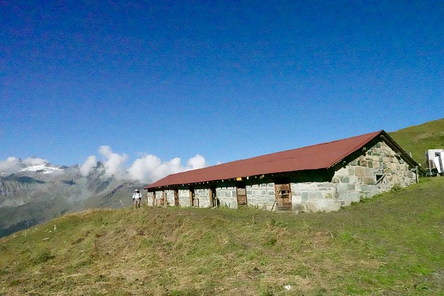 Past the cow shed