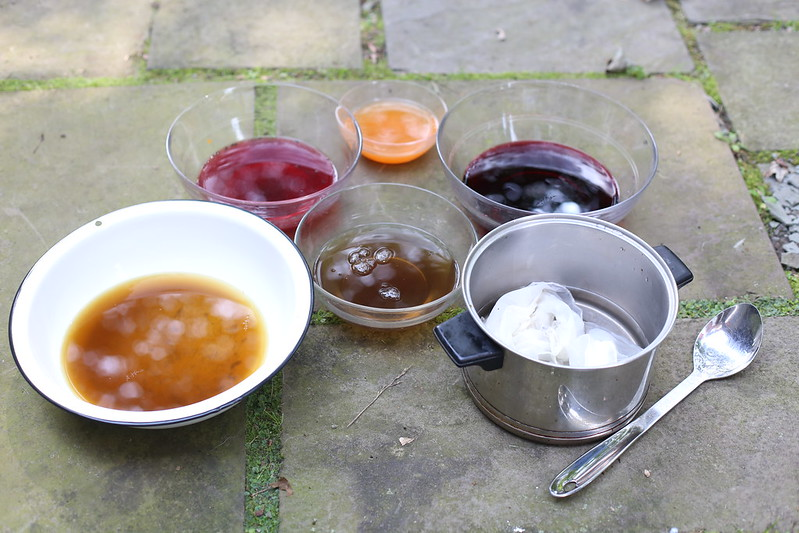 natural dye baths